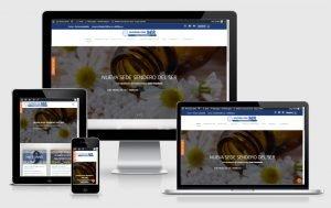 Ok Web – Sitios Destacados – Sendero del SER