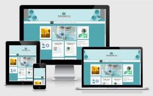 Ok Web – Sitios Web – Calculaser