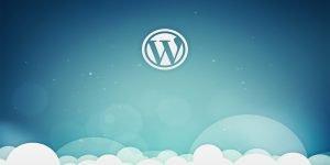 Ok Web – Consultores Wordpress