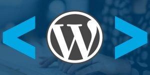 Ok web – Codigo Wordpress