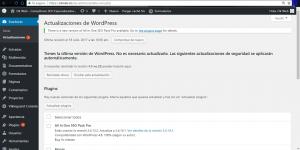 Ok Web – actualización wordpress