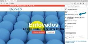 Ok Web – Borrar datos y archivos en cache