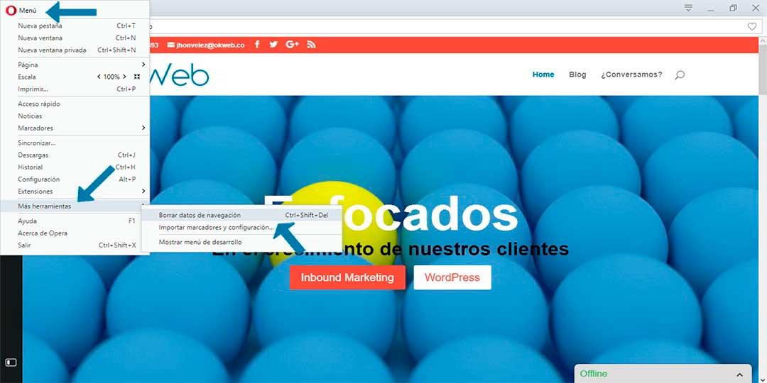 Ok Web - eliminar cache de Opera