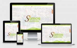 Ok-Web-Sitios-Web-Somos-Saludables